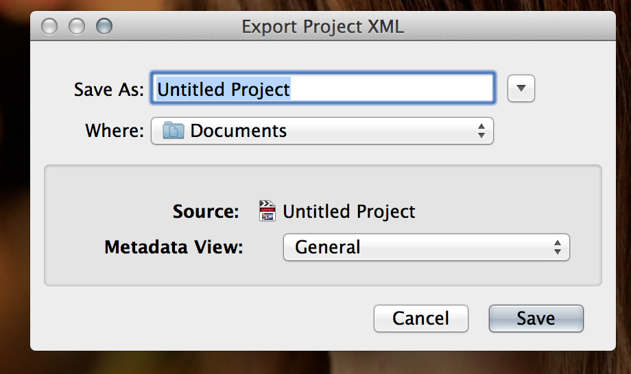 4- Export Dialogue Box